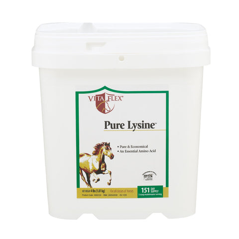 Vita Flex Pure Lysine, 151 Day Supply, 4 lbs