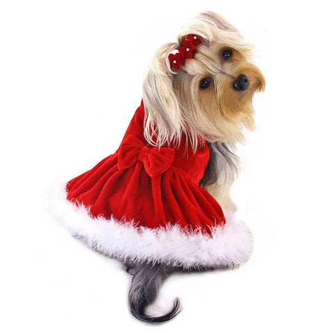 Klippo Dog/Puppy Christmas/Holiday/Sundress/Party/Valentine's Day/Festive/Fancy/Formal Velour with Boa Trims Dress for Small Breeds RED m