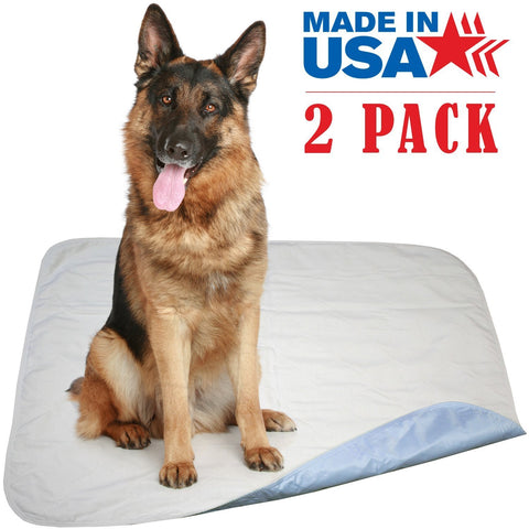 2 Pack - 34 x 36 - Large Premium Heavyweight Waterproof Reusable Pet Mat / Quilted Washable Large Dog / Puppy Training Travel Pee Pads Blue