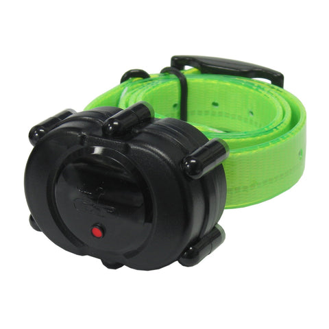 DT Systems Add-On or Replacement Training Collar Receiver, Black Green