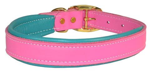 Perri's DC100 Padded Leather Dog Collar, Large, Pink/Turquoise