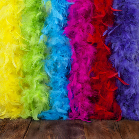 Feather Boa Set of Vibrant Colors – Fits Any Occasion – Mardi Gras Decorations - Party Supplies – Costume Boas – 6.6ft, Long Feather Boas – Fluffy – Eco-Friendly (Rainbow (6pcs), 40g) Rainbow (6pcs)