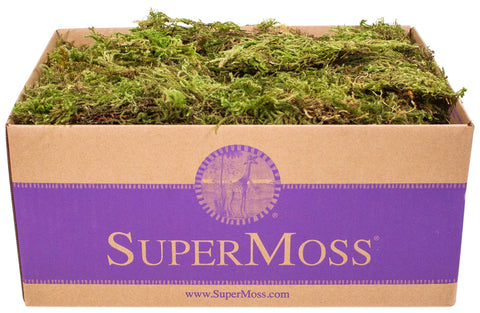 SuperMoss (21533) Forest Moss Dried, Natural, 3lbs Natural Dried Appx. 3 lb Bulk Case