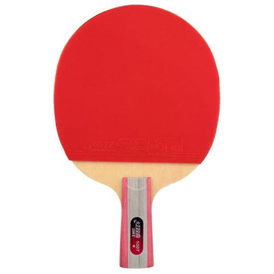 DHS T1007 Penhold (CS) Long pips Racket Set