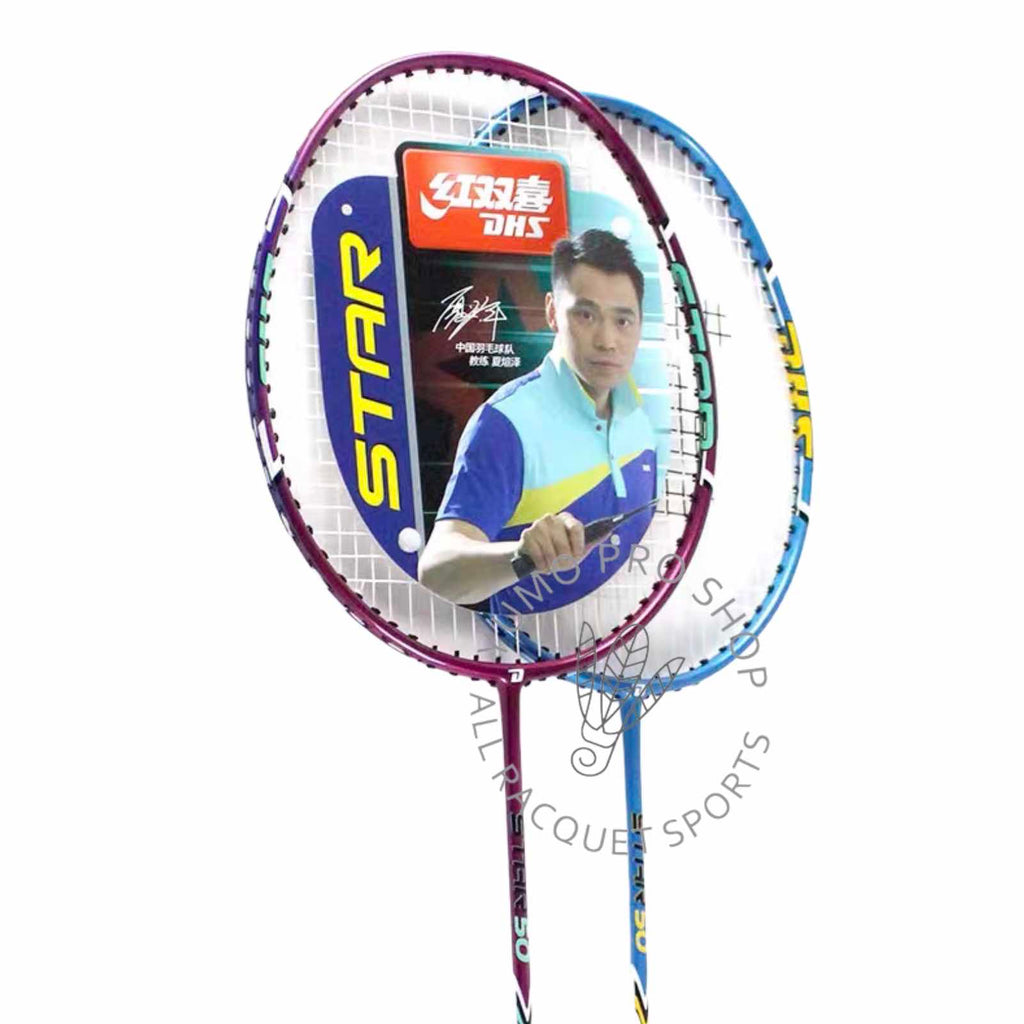 DHS Badminton Star 50 - 2 player racket