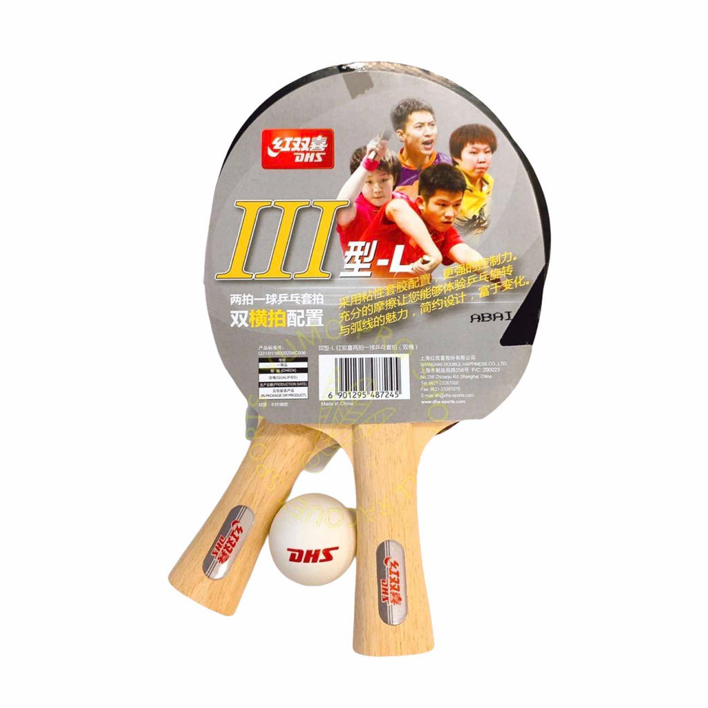 DHS starter beginner recreational 2 set paddle ping pong set