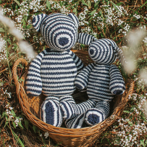 Stripey Bear and Bunny