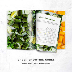 Smoothie Booster Cubes (digital) - Rawkstar Smoothie Shop