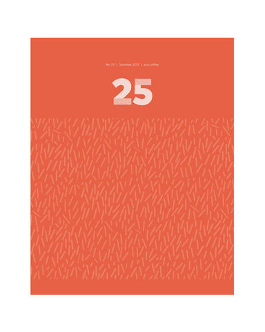 25 - Single Issue