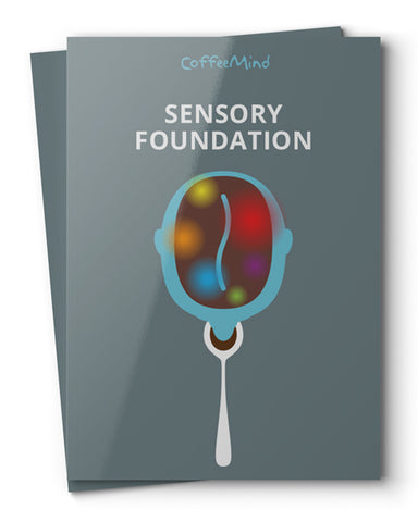 Book- Sensory Foundation
