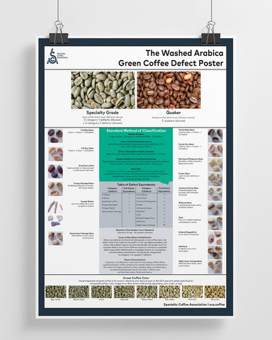 Green Arabica Coffee Classification System Poster