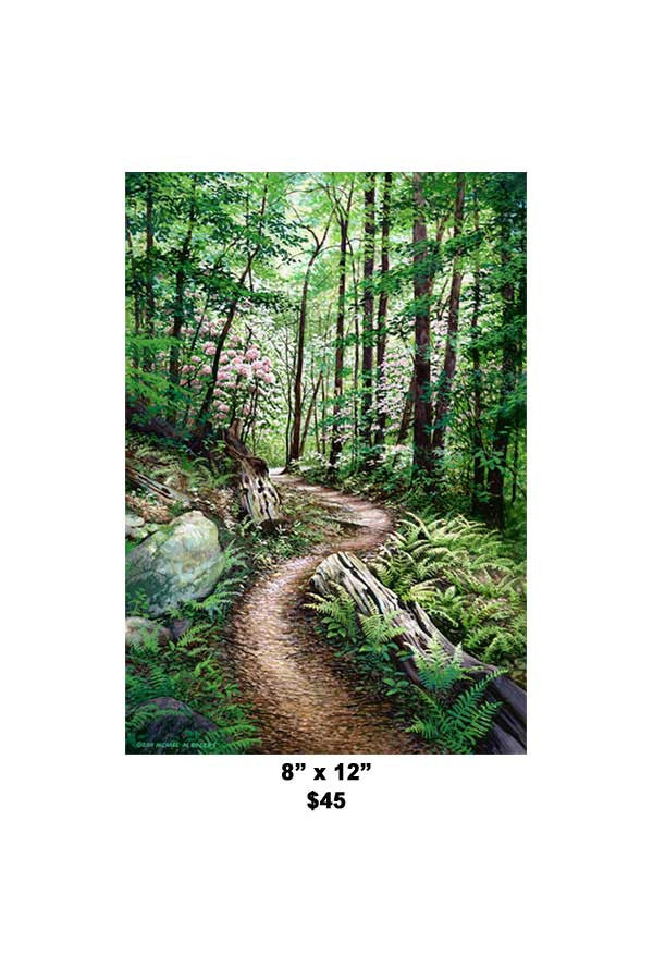 """Timber Ridge Trail"" Paper or Canvas Fine Art Print"