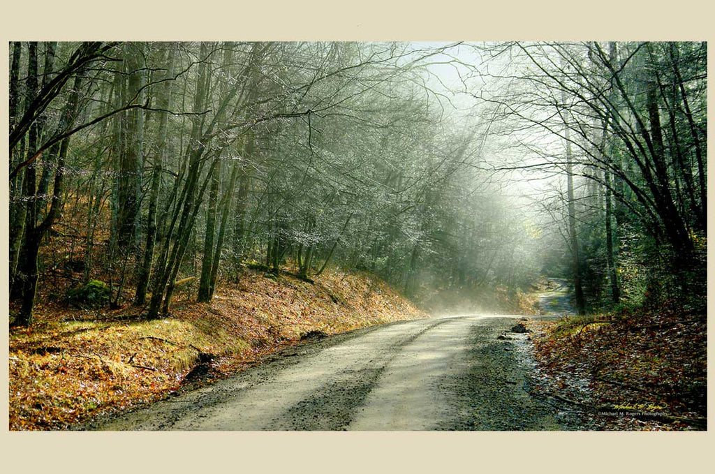"Dew Drop Road 20"" x 34"" Canvas"