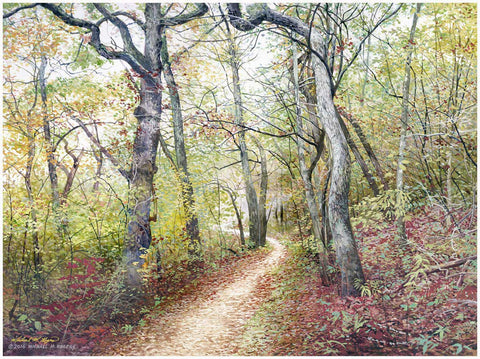 SILER BALD AUTUMN TRAIL Canvas Print