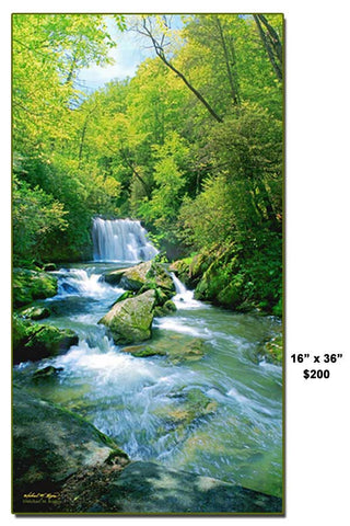 Yellow Creek Falls Vertical Photo