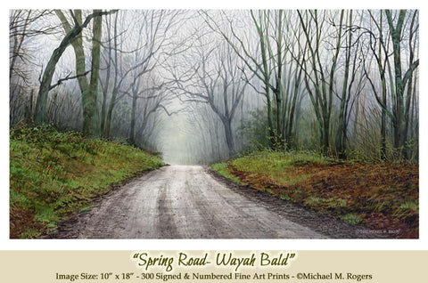 """Spring Road - Wayah Bald"" Fine Art Print On Paper"