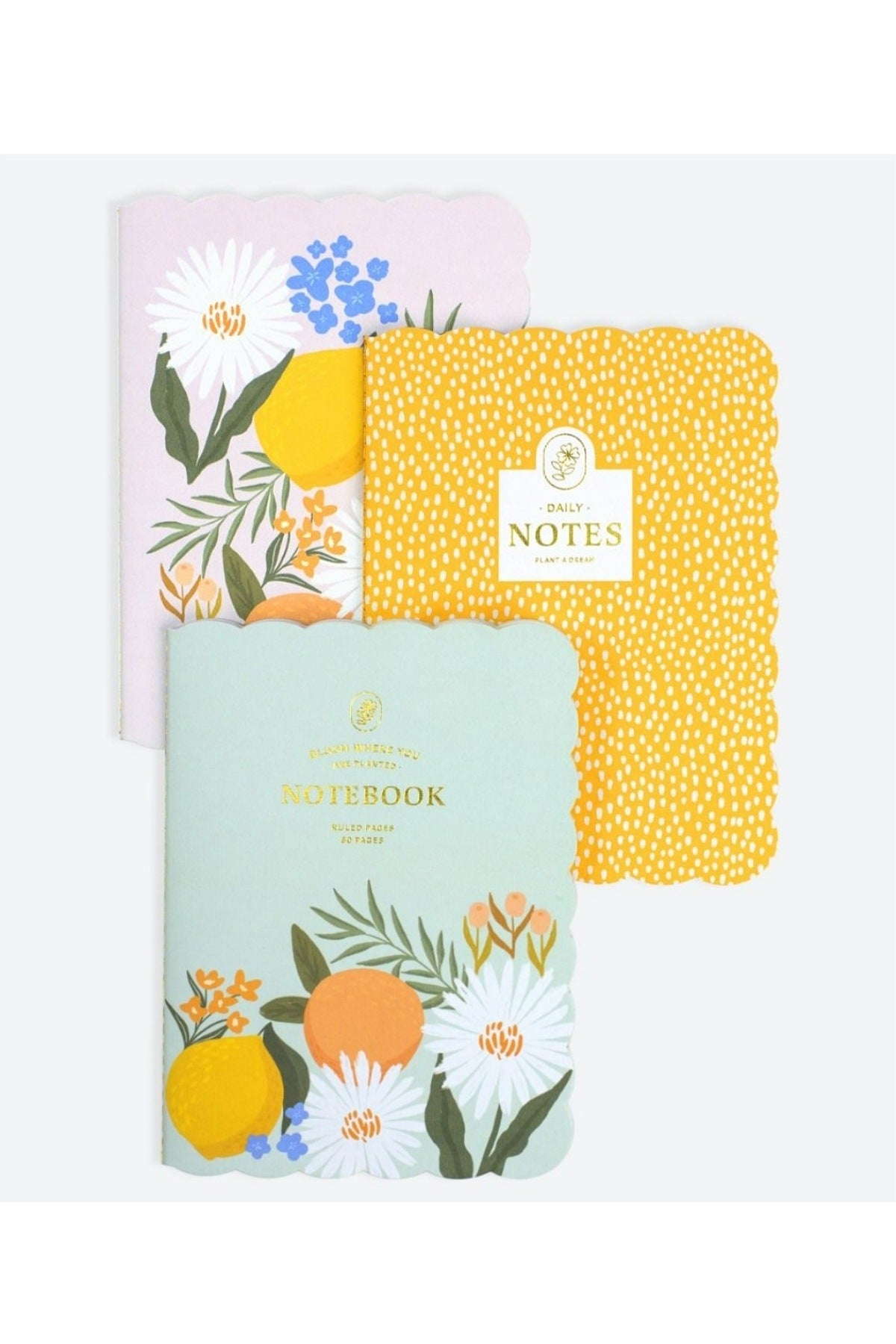 Citrus Florals 3 Pack Journals