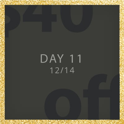 Day 11 deal