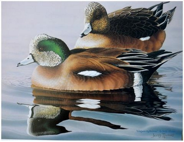 """Widgeon Reflections"""