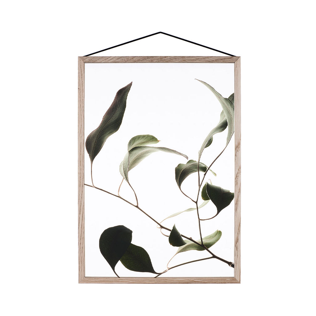 Moebe Floating Leaves 09 Oak Frame