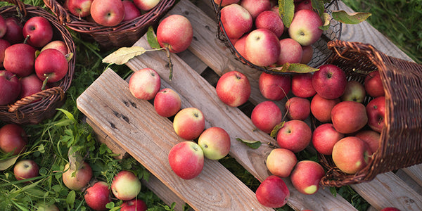 17 Delicious Recipes to Make with Apples