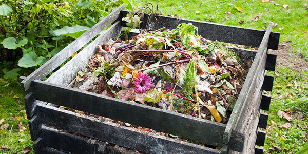 Home Composting: Not as Scary as It Seems