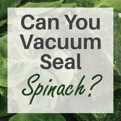 Can You Vacuum Seal Spinach?