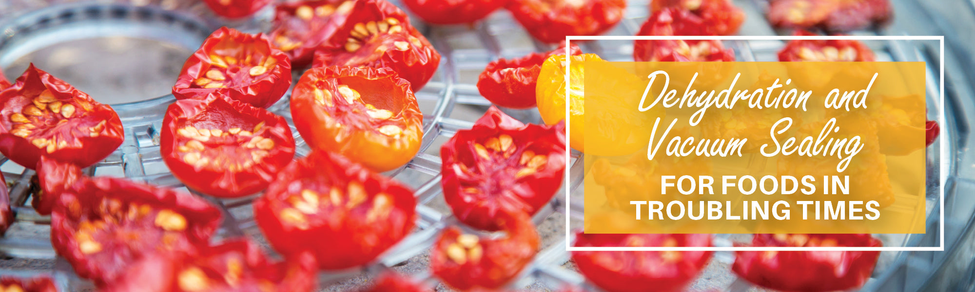 Dehydration and Vacuum Sealing for Foods in Troubling Times