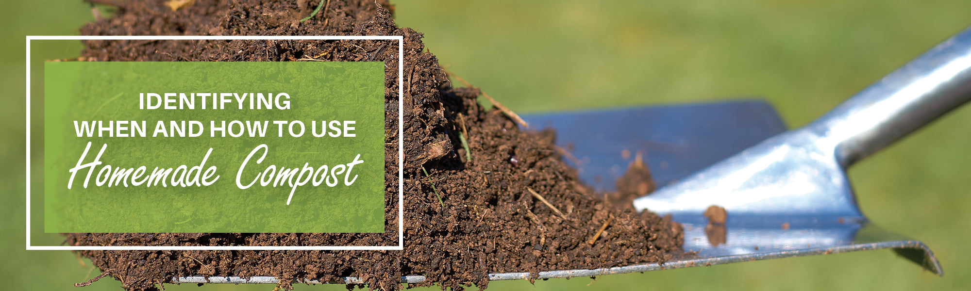 Identifying When and How to Use Homemade Compost