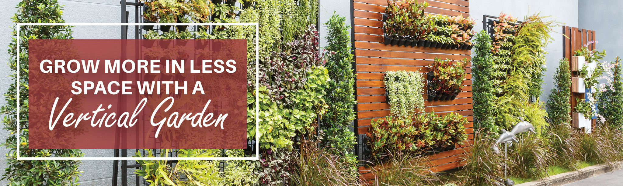 Grow More with Less Space with a Vertical Garden