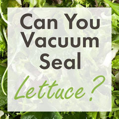 can you vacuum seal lettuce?