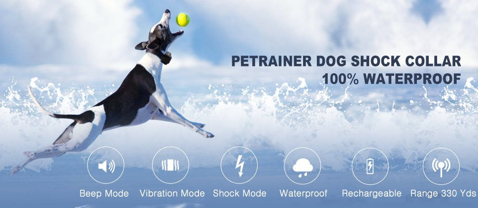 Petrainer PET998DBU Shock Collar