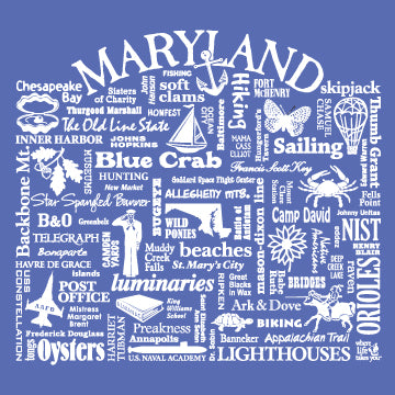 "WLTY ""Maryland"" Ladies V-Neck T-Shirt"