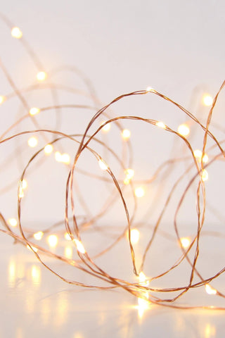 SEED LIGHTS 10Metre COPPER PLUG IN