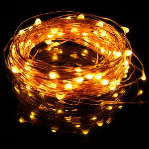 SEED LIGHTS 10Metre COPPER USB