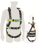 Harness - Basic Certified (M1020083)