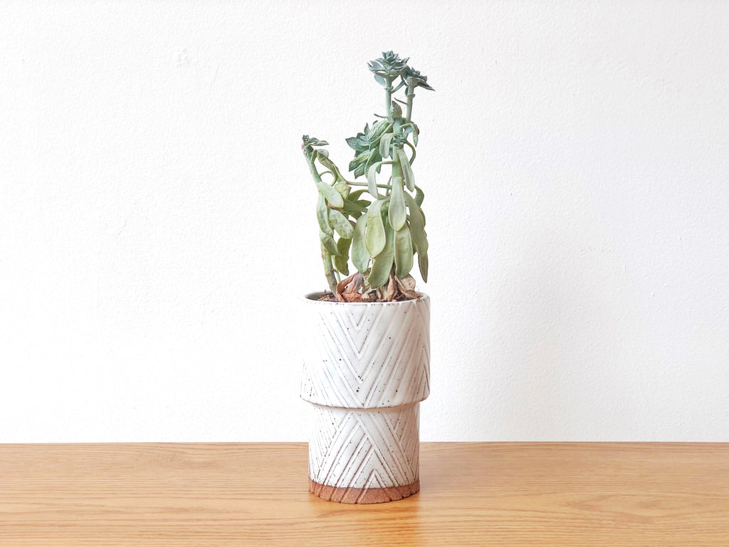 Ceramic Carved Planter