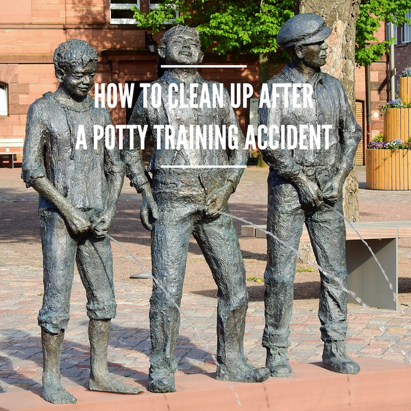 How to clean up after a potty training accident
