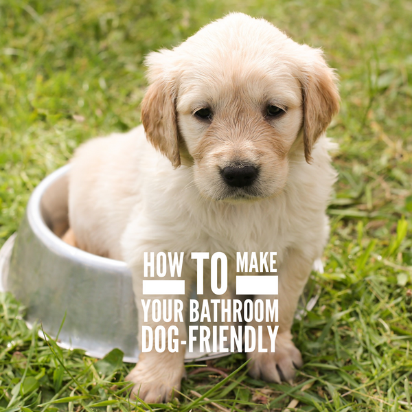 How to make your bathroom dog-friendly