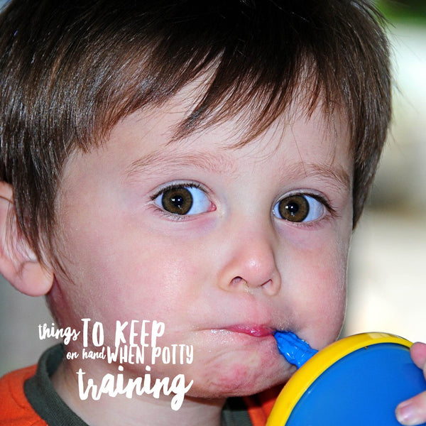 4 Things to always keep on hand when potty training
