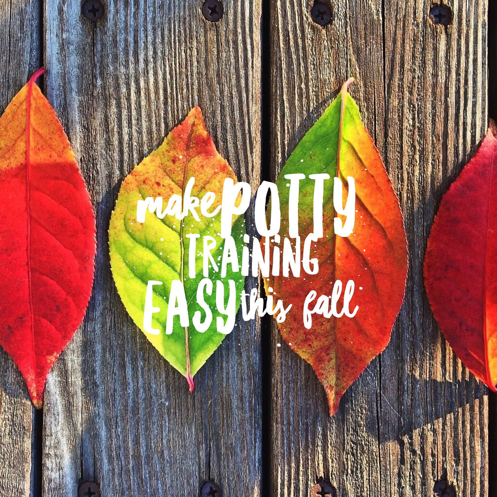 3 Ways to make potty training easy this fall