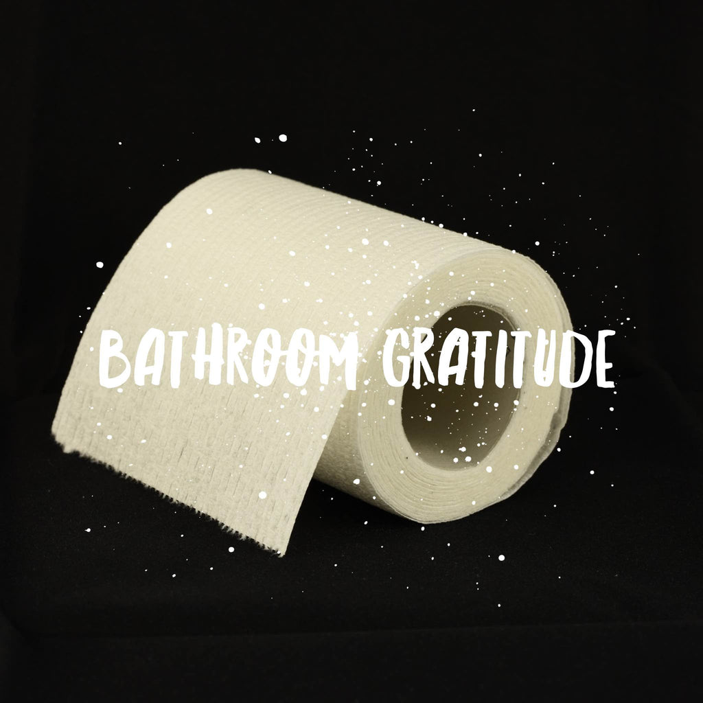 3 bathroom-related things to be grateful for in 2016