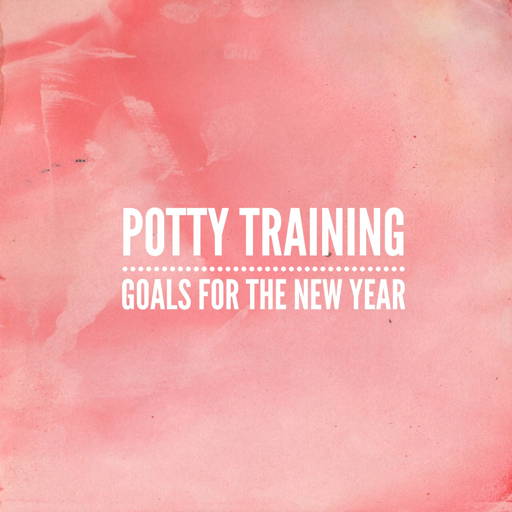 Potty training goals for the New Year
