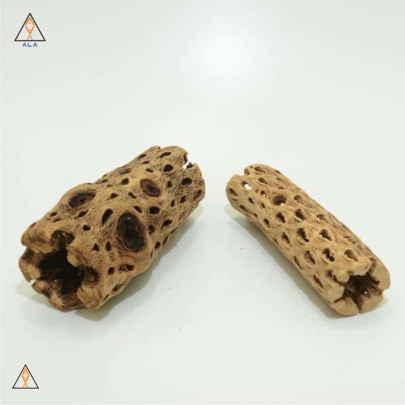 Freshwater Aquarium Wood Cholla Wood - ALA