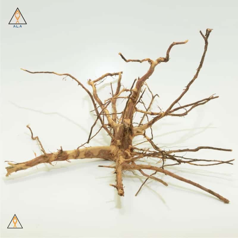 Aquarium Wood Kakado Wood Showpiece #22223 - ALA