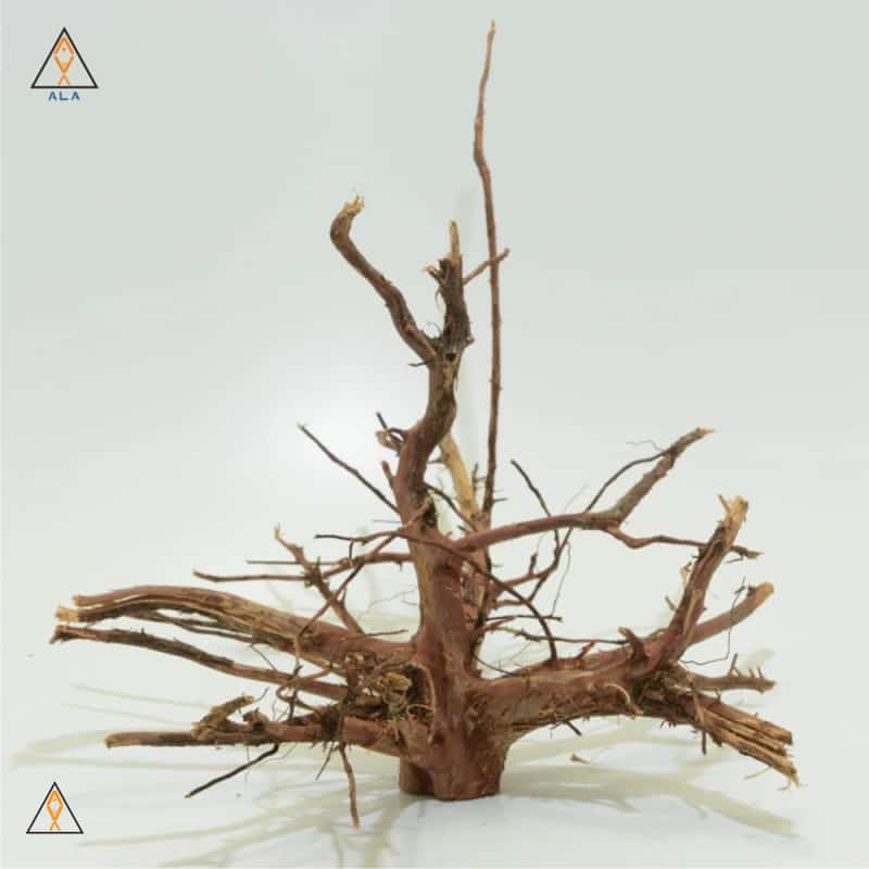 Aquarium Wood Kakado Wood Showpiece #22224 - ALA
