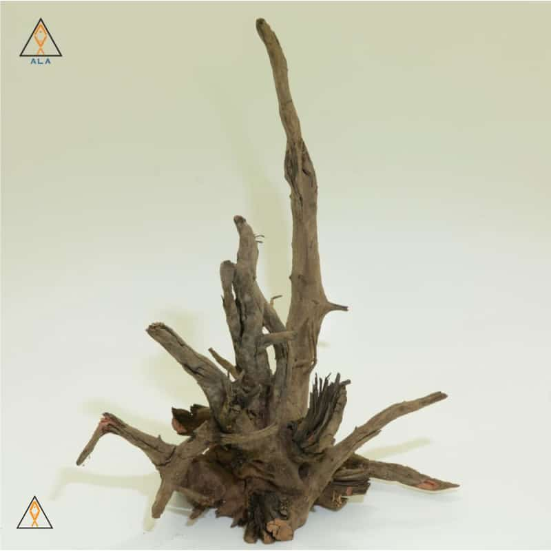 aquarium wood Saba Wood Showpiece #22222 - ALA