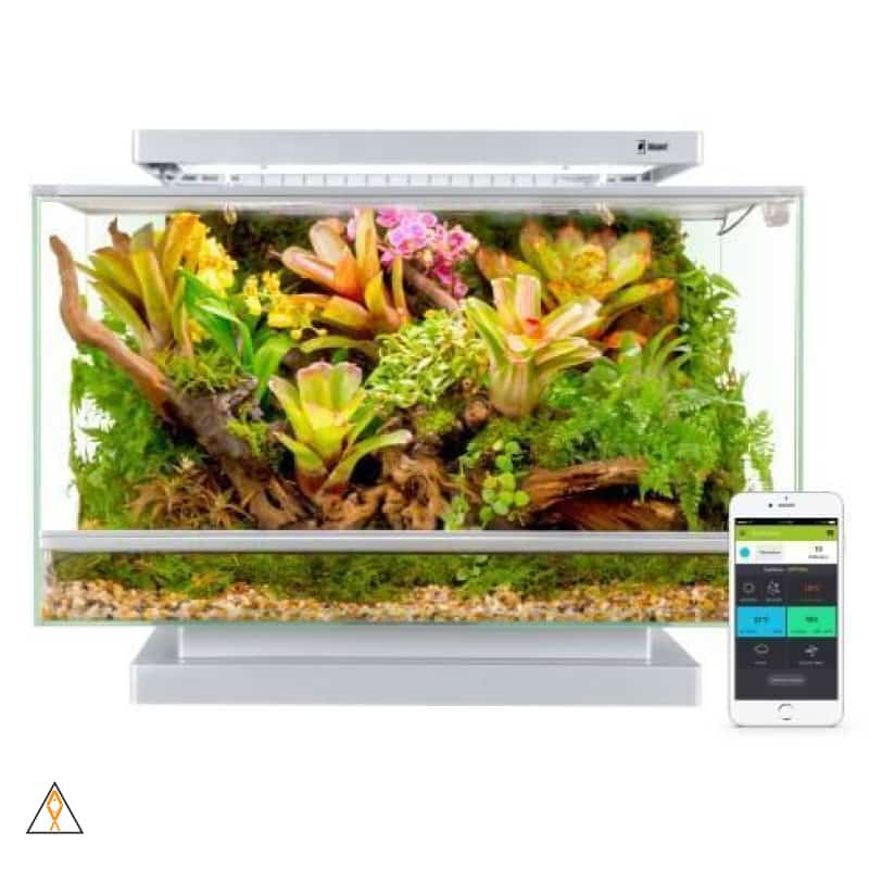 Vivarium Biopod Smart Microhabitat