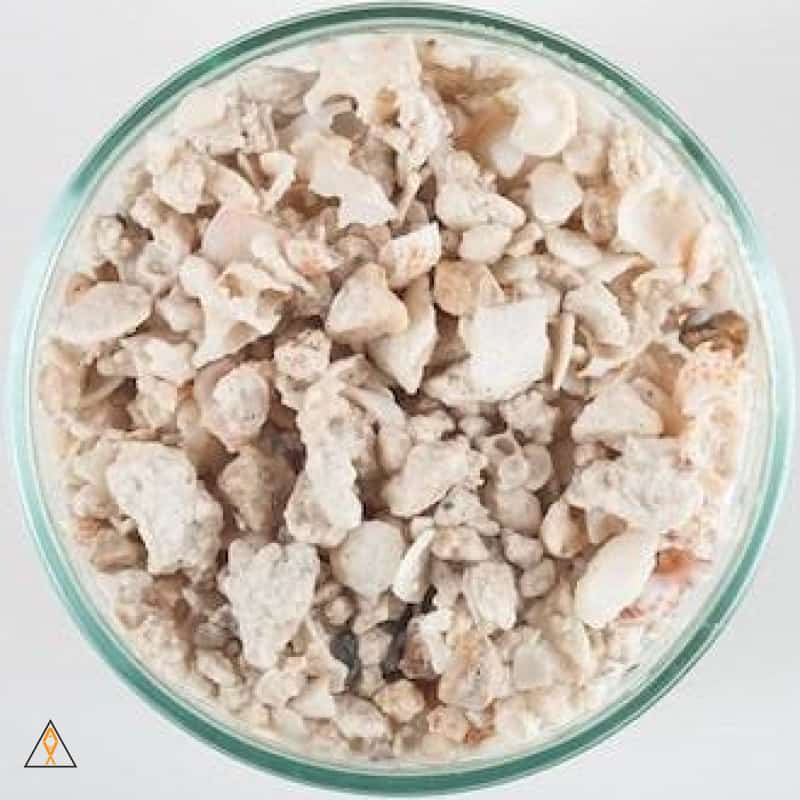 Crushed Coral Substrate Florida Aragonite Crushed Coral - CaribSea