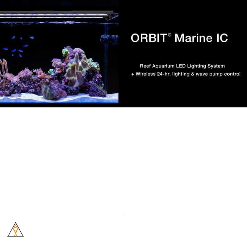 Orbit IC Reef LED System - Current USA